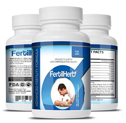 FertilHerb® pour Hommes de la Fertilité de la Formule (3-Pack de 3 mois d'Approvisionnement) | Recommandé par les docteurs, Tous Naturels, des Antioxydants à base de plantes de la Fertilité de la Formule Et de Multivitamines pour les Hommes, 30 Portions P