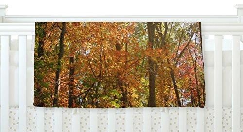 KESS InHouse Sylvia Coomes Autumn Trees 1 Green Orange Fleece Baby Blanket 40 x 30 [並行輸入品]   B077ZPRR94