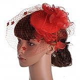 DIDIDD Sombrero - Señoras Otoño e Invierno Tocado Británico Dama Noble Sombreros Malla Gasa Material Banquete Boda Señoras Headwear,Rojo,14 * 12 cm