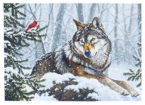 Oak Street Wolf Watching Cardinal Winter LED Art 8