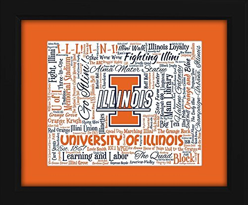 - University of Illinois 16x20 Art Piece - Beautifully matted and framed behind glass