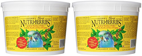 Berry Parakeet (Lafebers 2 Pack of Parakeet Nutri-Berries, 4 Pounds Per Container)