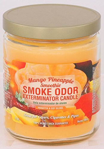 Smoke Odor Exterminator 13oz Jar Candle, Mango Pineapple Smoothie (Pineapple Mango)