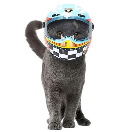 JYNQR Gato Cascos Mascota, Protección de la Cabeza Sombrero Seguro ...