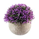 OFFIDIX Mini Plastic Purple Artificial Flowers With Paper Pots For Office &Home Decor Fake Plants For Gardening