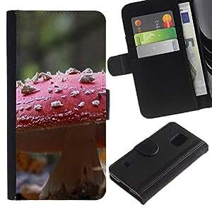 KingStore / Leather Etui en cuir / Samsung Galaxy S5 V SM-G900 / Planta Naturaleza Forrest Flor 107