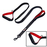 tobeDRI Heavy Duty Dog Leash - 2 Padded Handles, 6 feet Long - Dog Training Walking Leashes for Medium Large Dogs (Black)