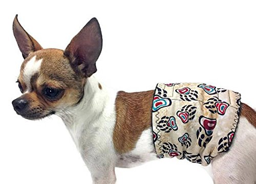 Group One Dog Gallery The Dog Belly Band Northwest for sale  Delivered anywhere in USA