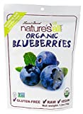 Ostrim Natural Snack Stick Beef & Elk Teriyaki -- 10 Packages, Natures All Foods Organic Freeze-Dried Raw Blueberries -- 1.2 oz