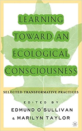 expanding the boundaries of transformative learning essays on  expanding the boundaries of transformative learning essays on theory and praxis e o sullivan amish morrell mary ann o connor 9780312295080