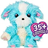 Little Live Scruff-a-Luvs Plush Mystery Electronic Rescue Pet - Real Rescue