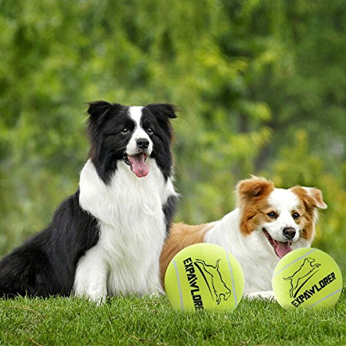 EXPAWLORER 2 Pack of Dog Giant Tennis Ball - Inflatable and Bouncy - 9.5 Pet Toys for Sports and Training