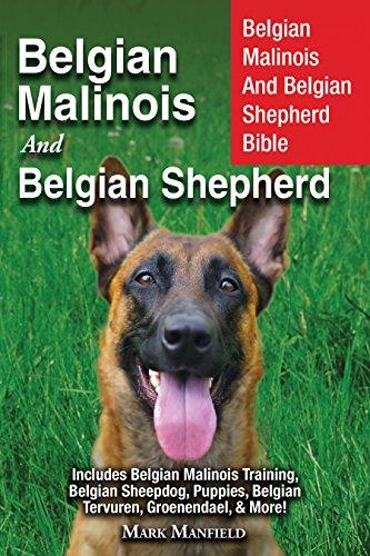 (Belgian Malinois And Belgian Shepherd: Belgian Malinois And Belgian Shepherd Bible Includes Belgian Malinois Training, Belgian Sheepdog, Puppies, Belgian Tervuren, Groenendael, & More!)