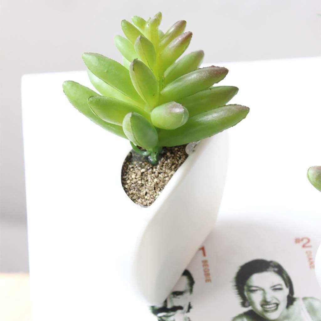 K/ühlschrankaufkleber Retro Serria/® Sukkulente der k/ünstlichen Blume K/ühlschrankmagnet Gr/üne Pflanze