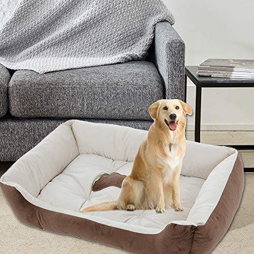 WensLTD Pet Dog Bed Ultra Plush Sofa-Style Couch Pet Bed for Dogs & Cats, Beige, Medium (Ship from US!!!)