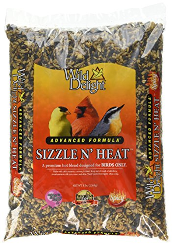 Wild Squirrel Bird (Wild Delight Sizzle N' Heat Bird Food, 5 lb)