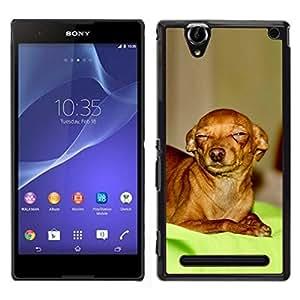 EJOY---Cubierta de la caja de protección para la piel dura ** Sony Xperia T2 Ultra ** --Escéptico Chihuahua Canine Pet canina