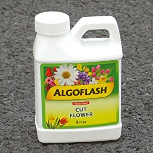 Algoflash Cut Flower Food - 20 pack - extend the life of flowers