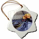 3dRose orn_90243_1 USA, Indiana, Turkey Run State Park, Autumn US15 AMI0196 Anna Miller Snowflake Hanging Ornament, 3-Inch, Porcelain