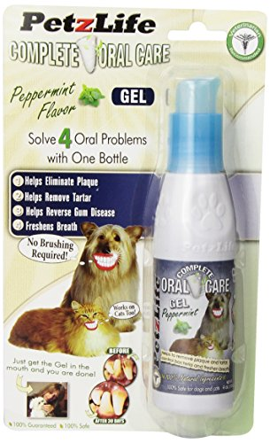 Joy Pet Oral Care Gel with Tarter Remover/Scraper, 4-Ounce, Peppermint