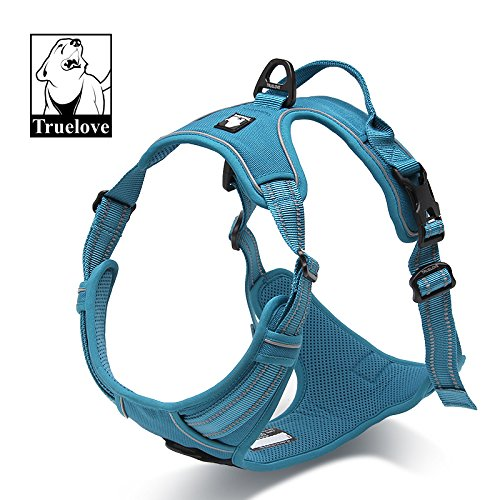 Dog Harness, Front and Rear Leash Hook Up, Restriction Training Pulling Handle, Adjustable, 3M Reflective, Padded, All Weather (S, Blue Blast) ()