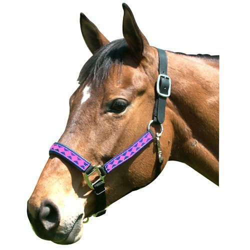 - Intrepid International Leather Crown Diamond Halter with Padded Nose, Blue/Pink, Full