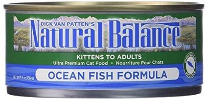 Interesting phrase dick van pattens natural balance cat food can