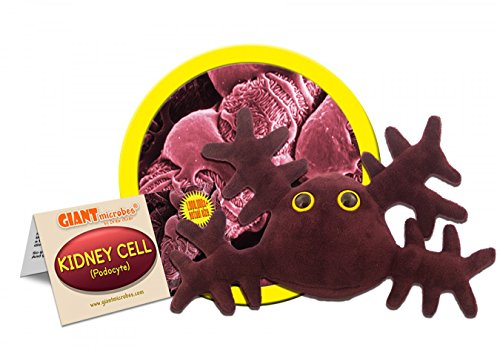 GIANTmicrobes Kidney Cell (Podocyte) Plush Toy