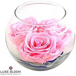 "Luxe Bloom | Ballet Pink Preserved Roses last 60 days | Perfect for Valentine's Gifts. Share the long lasting love by Luxe Bloom | 3 pink roses & greens in a 4"" glass bubble"