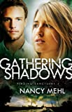 Gathering Shadows, Nancy Mehl, 0764211579