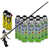 Dow Enerfoam 30oz Gun Dispensed Foam (12) + AWF 2ft Pro Foam Gun (1) + Great Stuff Pro foam Gun Cleaner (2)