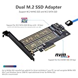 Dual M.2 PCIE Adapter for SATA or PCIE NVMe SSD