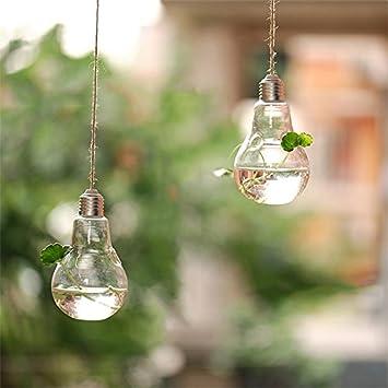 Jarr/ón de cristal transparente con forma de bombilla para maceta o maceta 8cm*14cm Wansan Style 1 vidrio