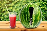 Fruit Keg Tapping & Spout Kit: Stainless Steel Drink Dispenser Set for Watermelons & Other Fruits - Fun Home Bar Gadgets & Cocktail Party Supplies