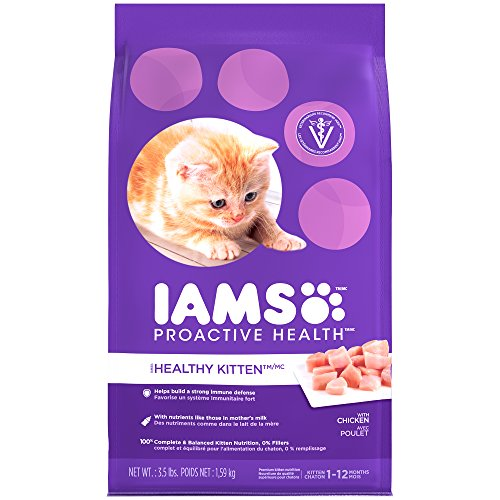 Iams Kitten Food Product Reviews