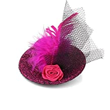 HITTIME Feather Mess Net Rose Flower Head Hair Pin Clip Top Hat Wedding Bridal Fascinator Cocktail Rose Red