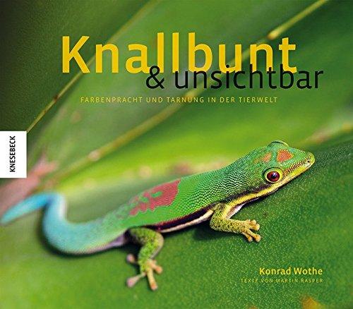 knallbunt-und-unsichtbar-farbenpracht-und-tarnung-in-der-tierwelt