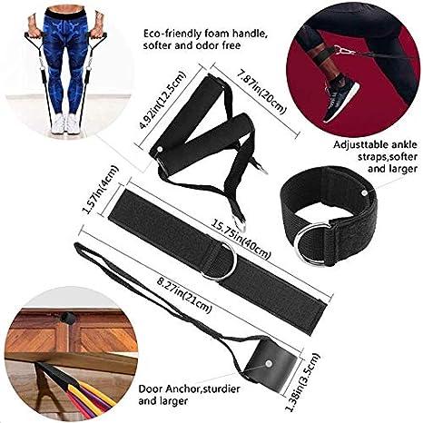 PROFIT Gomas/Bandas/Cintas elásticas Fitness musculación Resistencia - Resistance Bands gluteo– Kit/Set Gimnasio, Deporte, Entrenamiento y aparatos ...