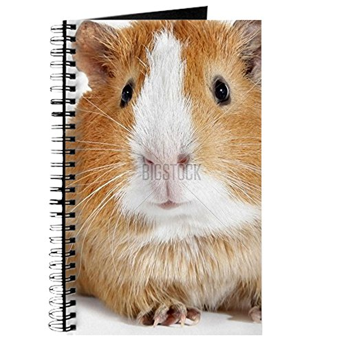 cafepress-guinea-pig-little-pet-rodent-journal-spiral-bound-journal-notebook-personal-diary-lined