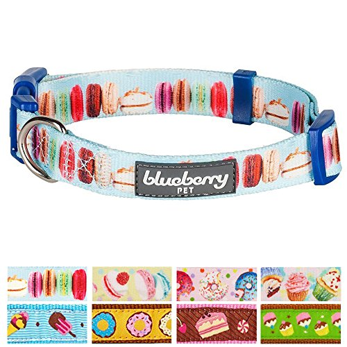 "Blueberry Pet 8 Patterns Party Ideas The Ultimate Macaroon Cake With Spring Pastel Hues Basic Dog Collar, Medium, Neck 14.5""-20"", Adjustable Collars for Dogs"