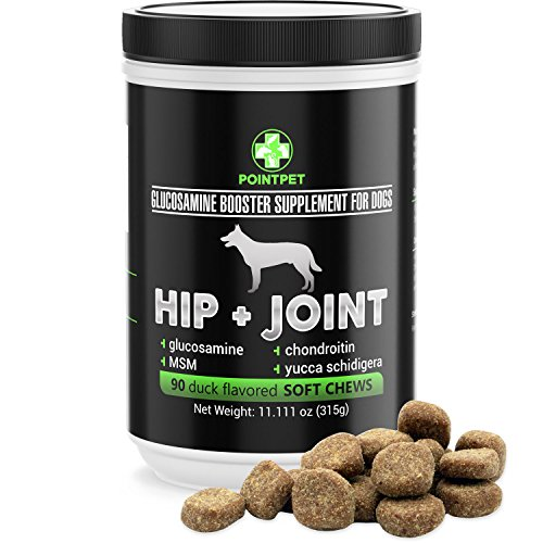 Glucosamine Biscuits Dog (POINTPET Hip and Joint Supplement for Dogs with Glucosamine, MSM, Chondroitin, Omega 3, 6, Vitamin E, Improves Mobility and Hip Dysplasia, Arthritis Pain Relief, 90 Soft Chews)