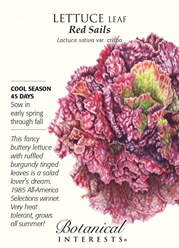 Red Sails Leaf Lettuce Seeds - 750 ()