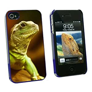 Graphics and More Asian Water Dragon Green Lizard Reptile - Snap On Hard Protective Case for Apple iPhone 6 4.7 - Blue - Carrying Case - Non-Retail Packaging - Blue