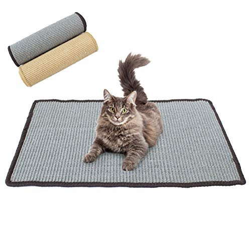Downtown Pet Supply Scratching Exerciser