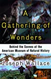 A Gathering of Wonders, Joseph Wallace, 0312252218
