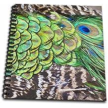 "3dRose db_132881_1 Peacock Feathers, Manila, Philippines AS29 KSU0017 Keren Su Drawing Book, 8 by 8"""