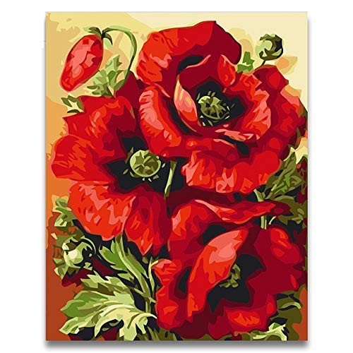Koomt Red Pink Beautiful Poppies Oil Painting Package DIY Pictures Coloring Draw by Numbers with Kits for Adult Kids Painting 16X20 Inch