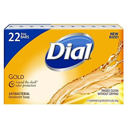 dial gold bar soap - 1