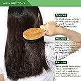 BESTOOL Hair Brush, Boar Bristle Hair Brushes for