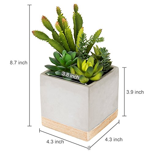MyGift 9-Inch Artificial Succulent Plant Arrangement in Square Gray Clay Planter by MyGift (Image #4)